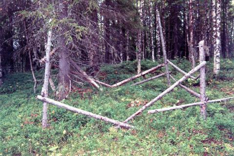 Фотография 2000 года